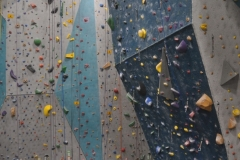 Indoor Rock Climbing Wall - Commercial Construction Project
