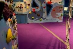 Commercial Construction Process - Indoor Rock Climbing