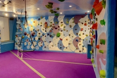 Commercial Construction Colorado - Indoor Rock Climbing
