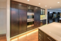 Colorado Springs Modern Contemporary Kitchen Cabinets, Pantry, & Fridge