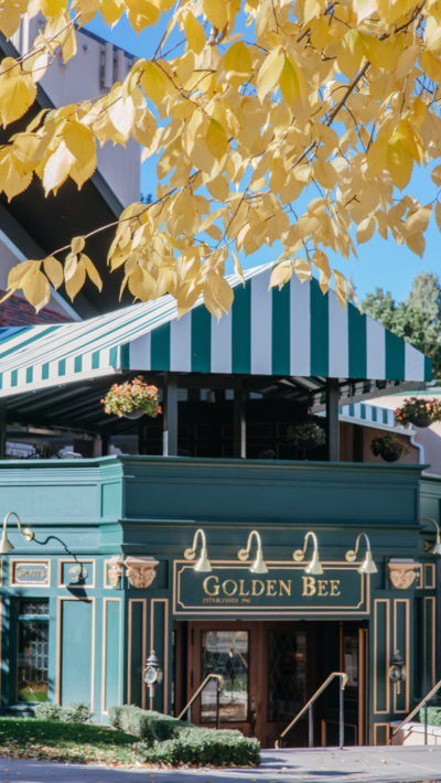 Bob McGrath Construction - Golden Bee